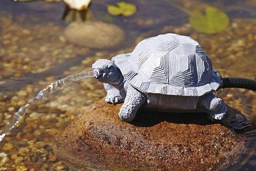 Water spouts Turtle