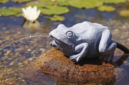 Water spouts Frog