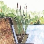 Marginal plant holder jute