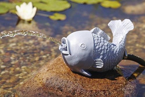 Water spouts Fish