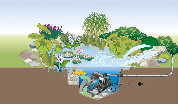 Cách lọc đáy hồ bằng các vật liệu lọc hồ cá