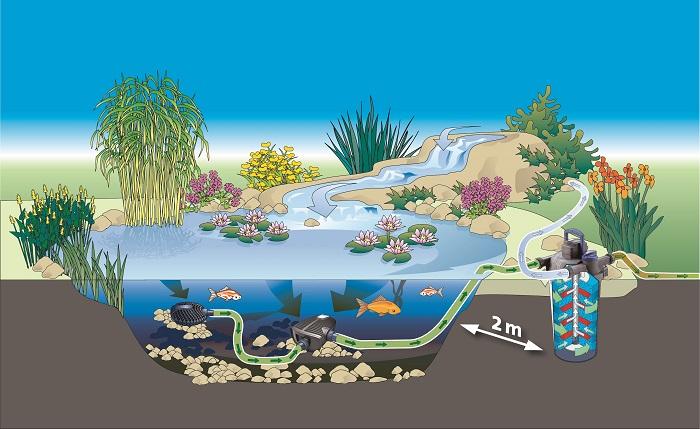 Bộ lọc nước- thiết bị hồ cá không thể thiếu!