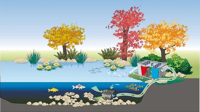 Lọc nước hồ cá kiểng bằng bộ lọc nước dòng chảy Biosmart- Oase