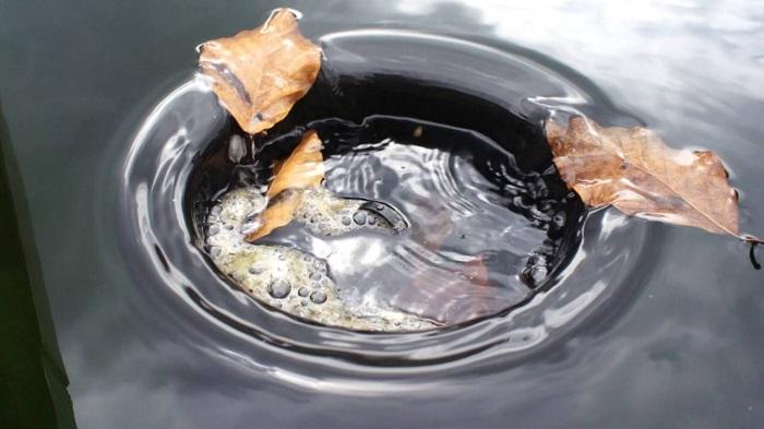 Tìm mua lọc bể cá giá rẻ và chất lượng