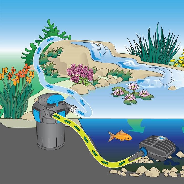 Bộ lọc nước hồ cá kiểng-Thiết bị hồ cá cho mọi nhà!